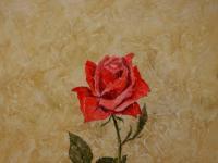 Still Art-Floral #2
