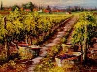 Vineyard Series #3